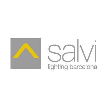 C.M. SALVI, S.L